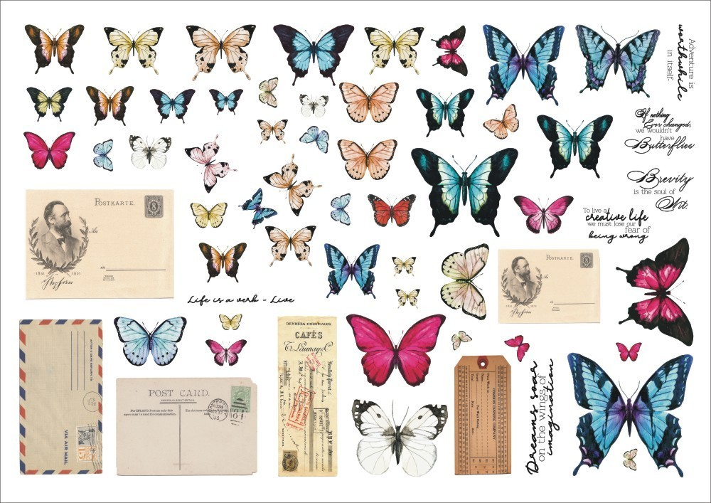 Grungy walls – Butterflies ephemera