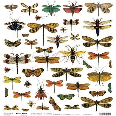 Insects - kivágóív