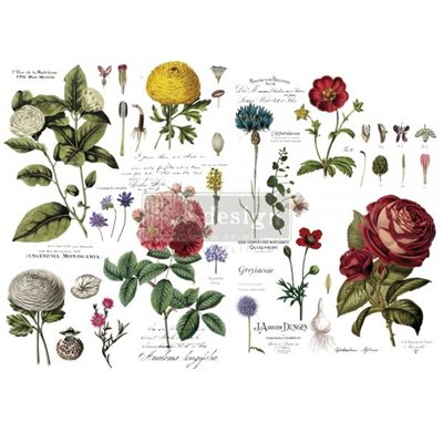 Re-Design with Prima Vintage Botanical 48x35 Inch transzferfólia