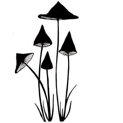 Slender Mushroom polimer bélyegző