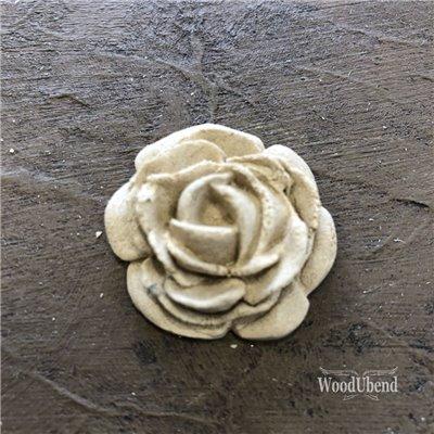 Közepes rózsa