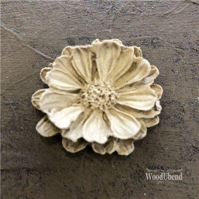 Közepes szirmos virág