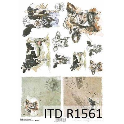 Rizspapír A4 des.1561