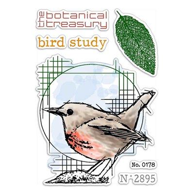 """Szilikonbélyegző szett 4""""x6""""- Bird Study"""