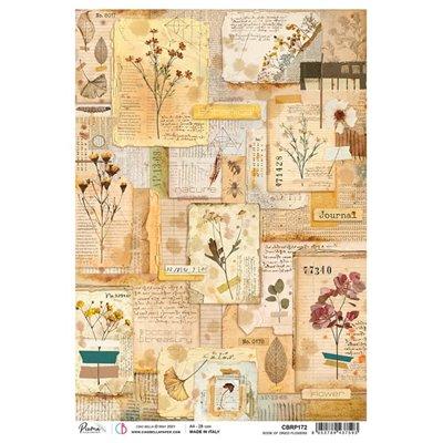 Rizspapír A4 - Book of dried flowers