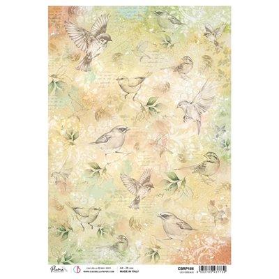 Rizspapír A4 - Les Oiseaux