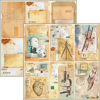 """Sign of the Times Cards 12""""x12""""-es papír"""