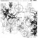 Átlátszó fólia - Steampunk flowers  - 12x12