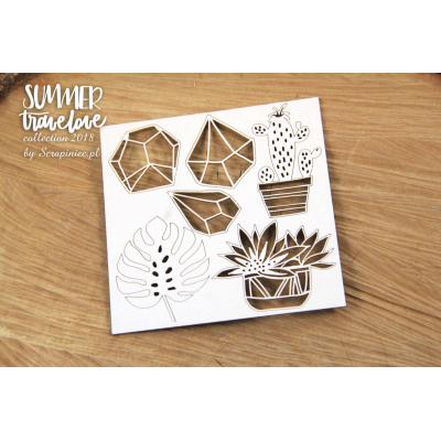 Summer Travelove - succulents des.2.