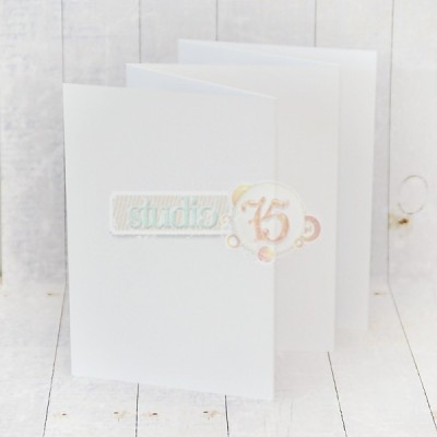 10 lapos harmonika album- 12x17