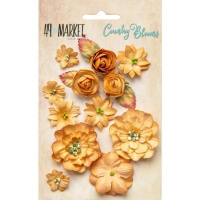 Papírvirág készlet - Country Blooms - Ginger