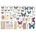 Grungy walls – Butterflies ephemera