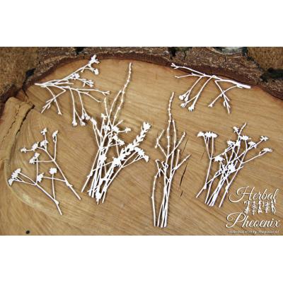 Herbal Phoenix - nagy gyógynövények